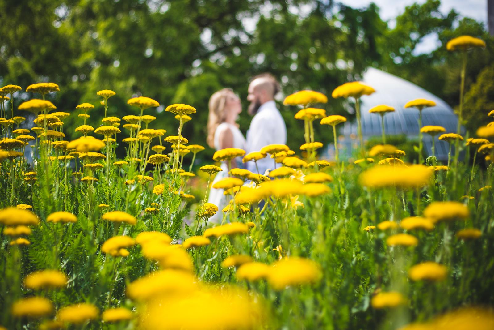 phipps-conservatory-botanical-garden-outdoor-garden-engagement-shoot-pittsburgh-manny-photographer-1